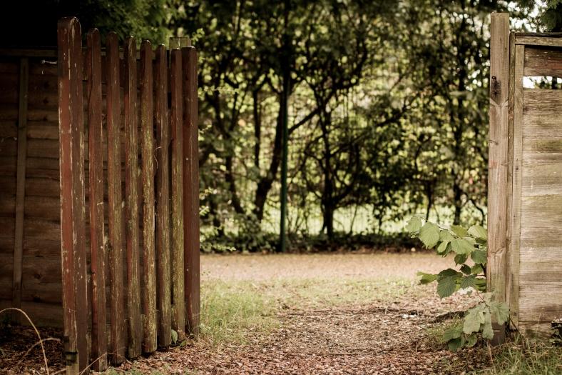 Mossy Gate
